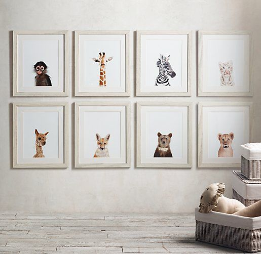 baby animal portraits - just rpint them and hang in frames