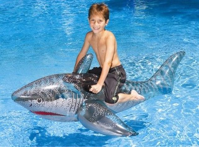 ride-on shark pool float for brave kids