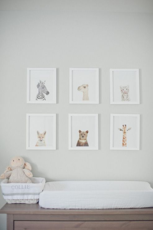 baby animal prints in same white frames look cute and are easy to DIY