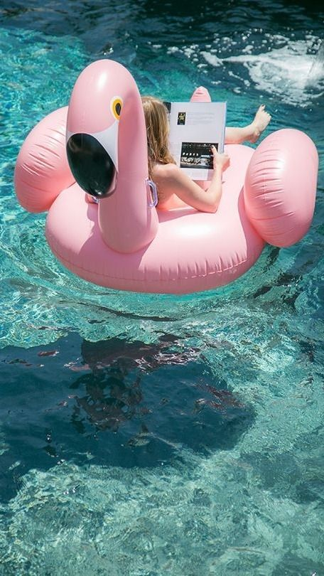pink flamingo float is a funny and cute idea