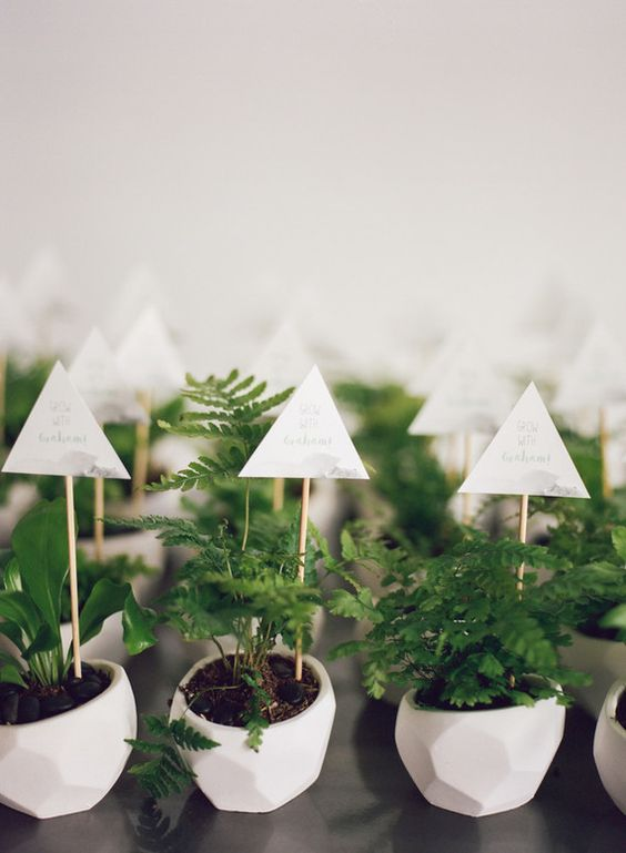 small faceted white pots with greenery and toppers look unusual