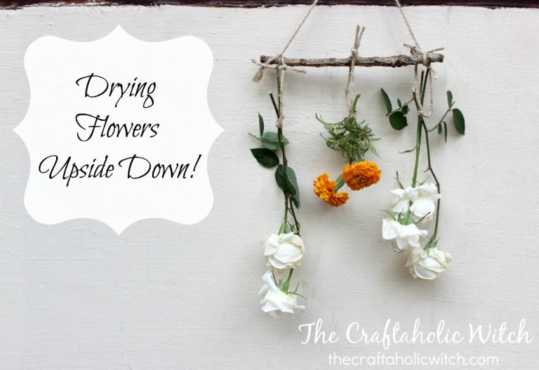 DIY dried flower hanging (via www.thecraftaholicwitch.com)