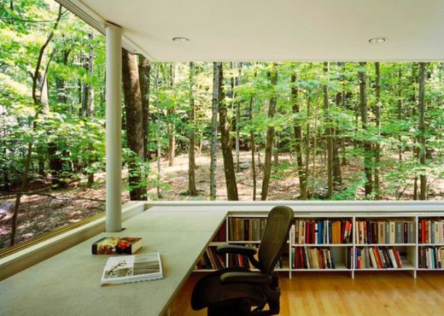 a fully glazed home library and office creates an effect of sitting in the forest