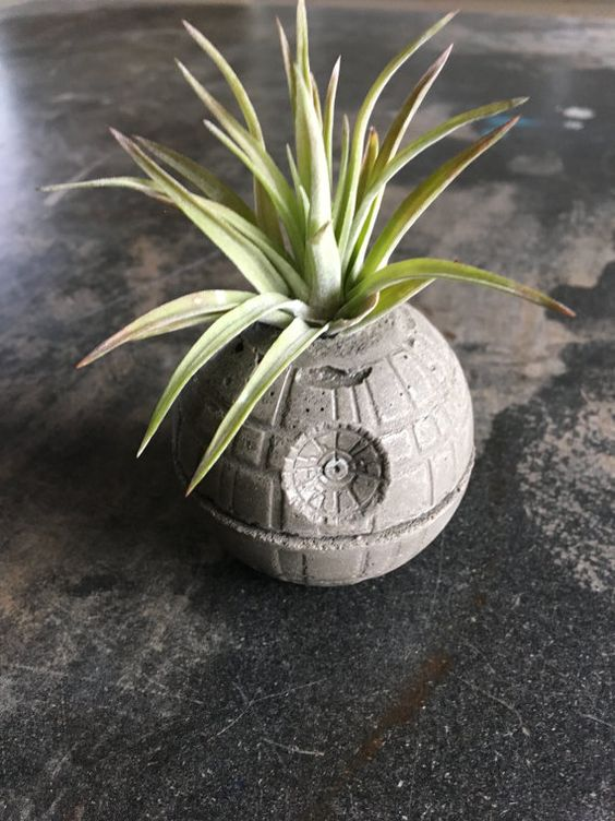 a concrete Death Star planter looks awesome and very modern