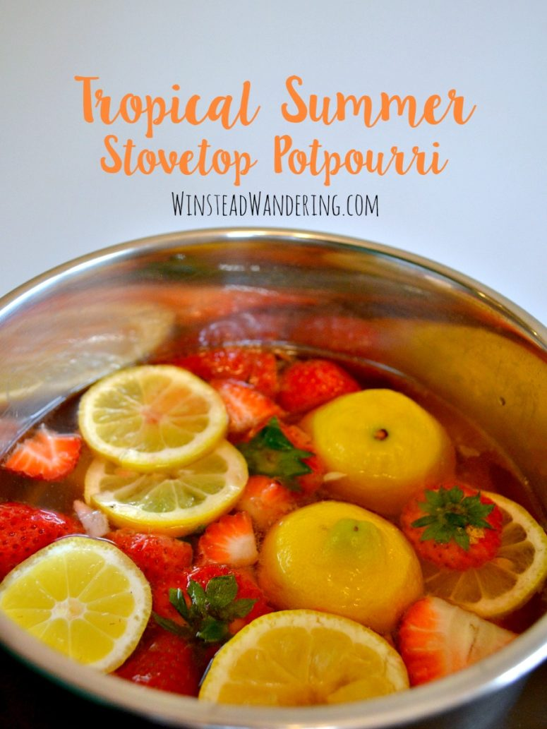 DIY tropical summer stovetop potpourri with citrus (via winsteadwandering.com)