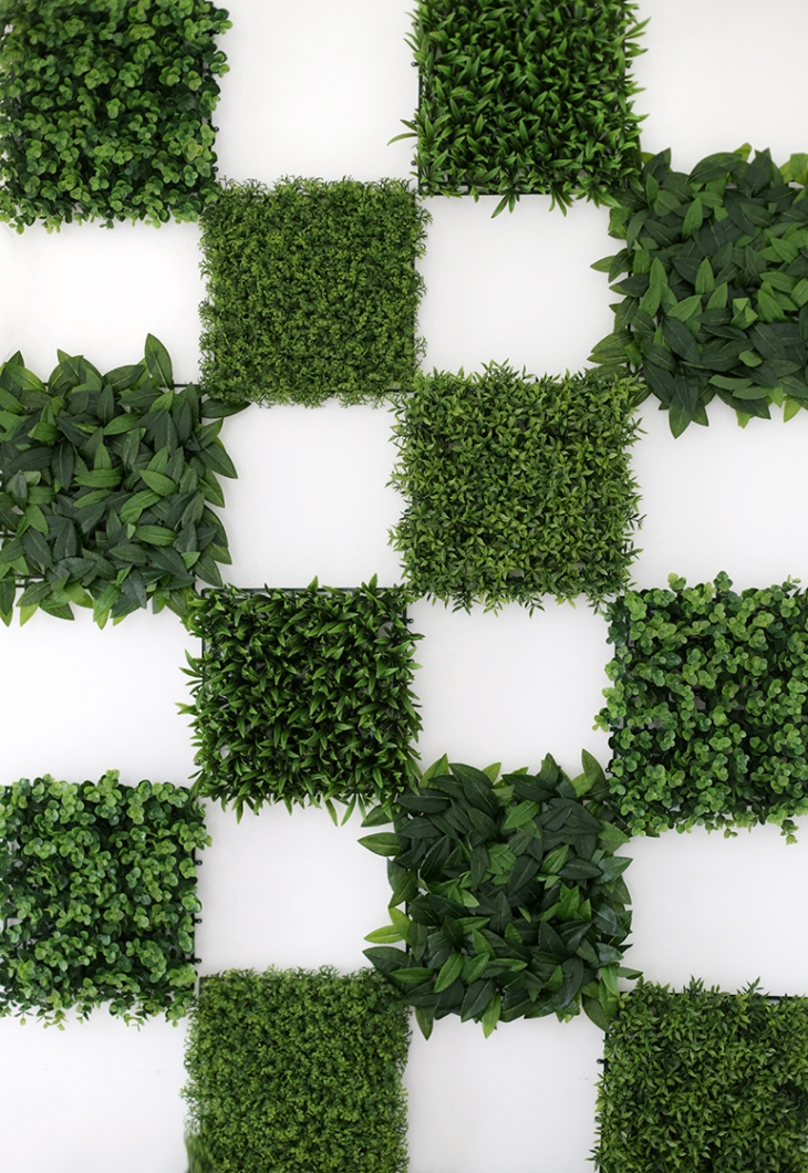 DIY greenery wall