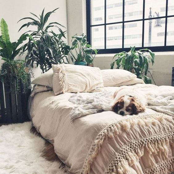 soft pastel bedding with lots of tassels will make your bedroom welcoming and relaxing