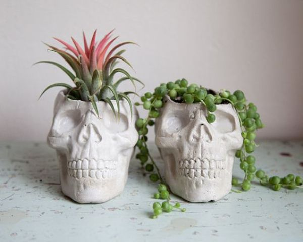 skull planters of concrete will add a chic modern touch to the space