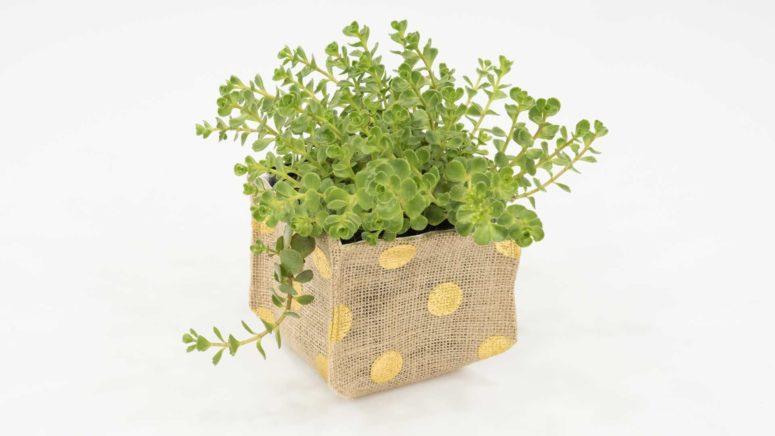DIY polka dot burlap planter (via https:)