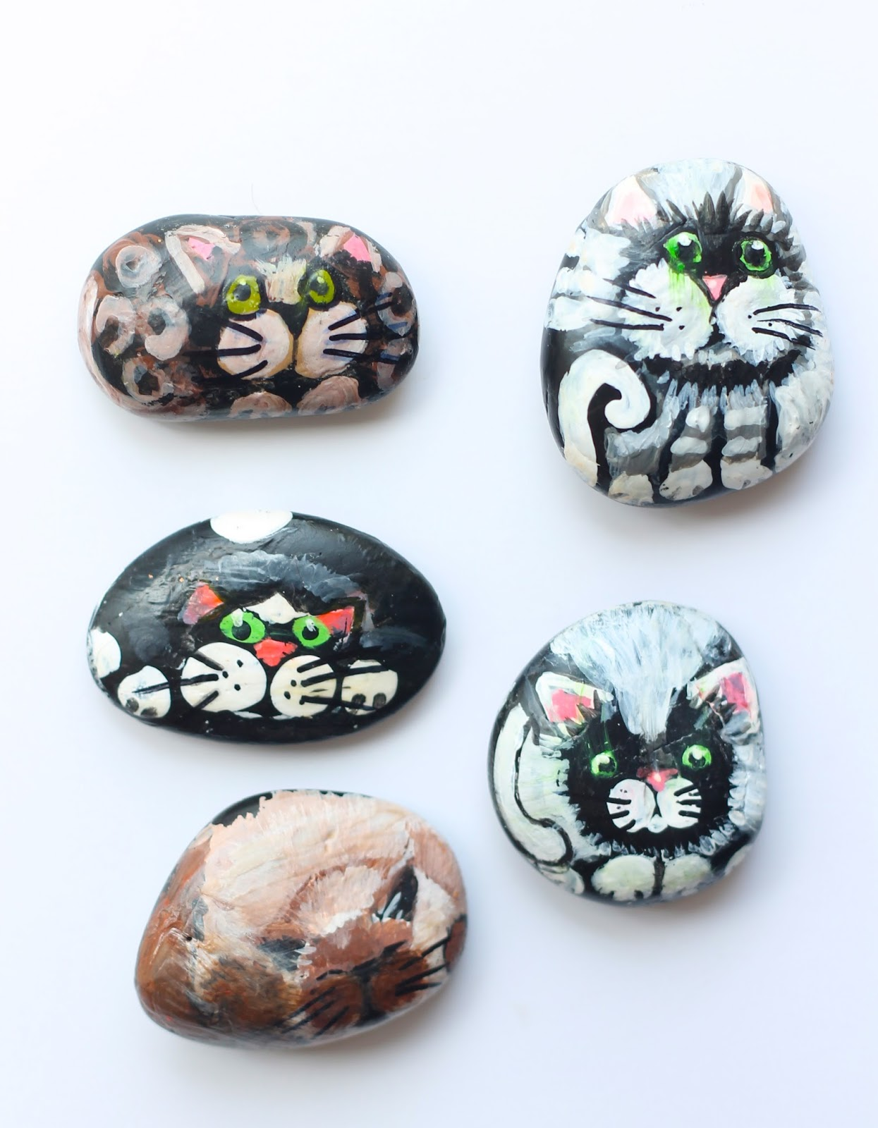 DIY cat painted rock craft