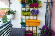 09 a wooden trellis attached to the wall and colorful planters on it