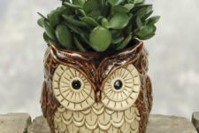 11 a ceramic planter shaped as an owl with succulents