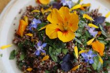 DIY edible flowers, parslane and quinoa salad