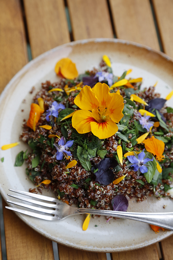 DIY edible flowers, parslane and quinoa salad