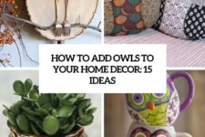 how to add owls to your home decor 15 ideas cover