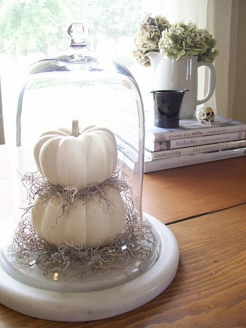 a simple white cloche display with pumpkins and hay for a cute Halloween look