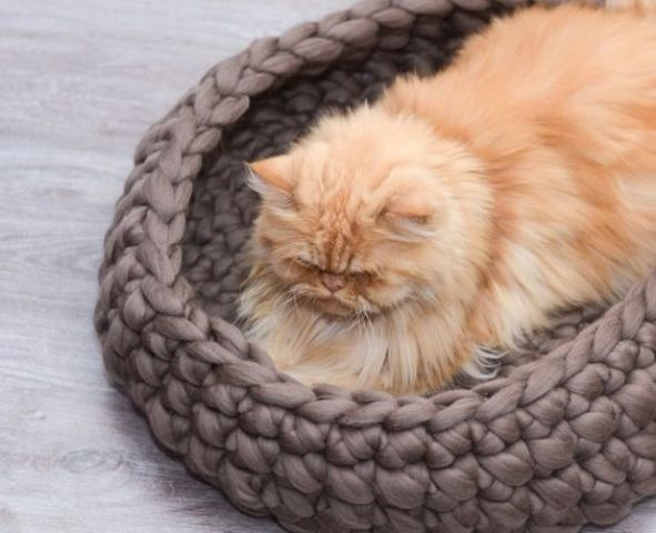 make your cat pleased with a woolen chunky knit bed to feel warm
