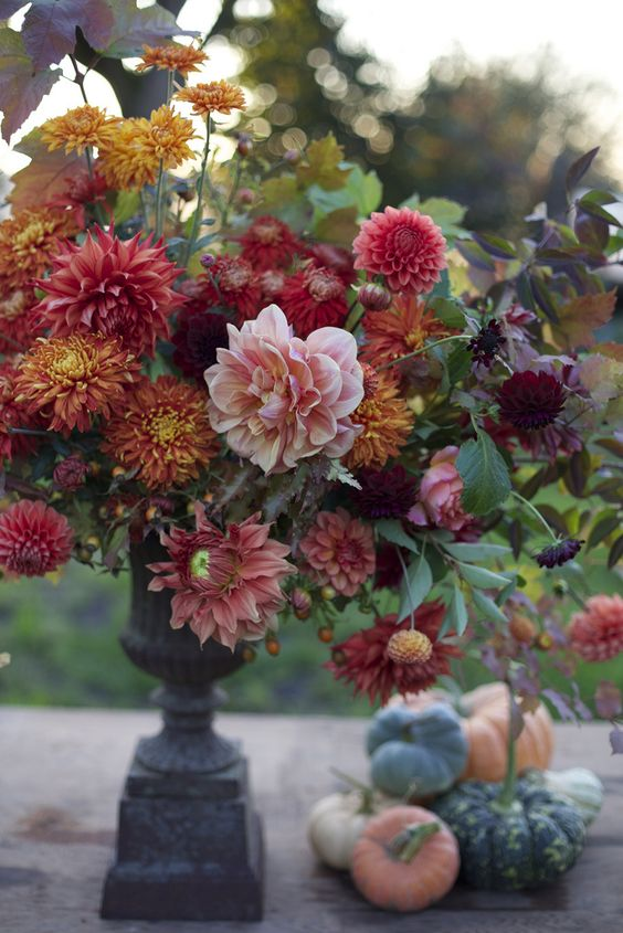 a bold fall bouquet with burnt orange, red and pink dahlias looks vivacious