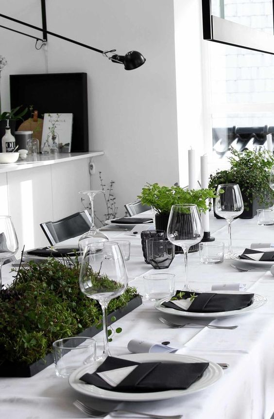 a minimalist tablescape in black and white with potted fresh greenery looks very chic