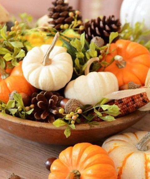 a bowl with corn, acorns, pinecones, fresh greenery and white and orange pumpkins