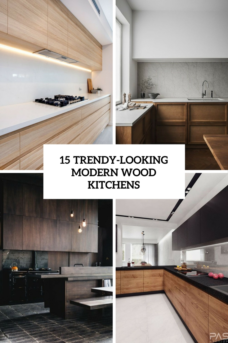 trendy looking modern wood kitchens cover