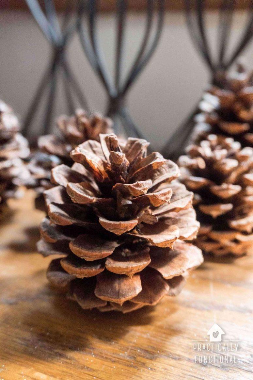 DIY cinnamon scented pinecones (via practicallyfunctional.com)