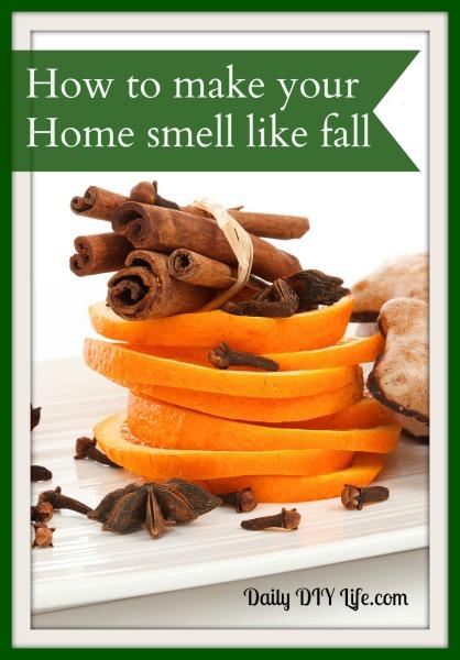 DIY fall potpourri (via www.dailydiylife.com)