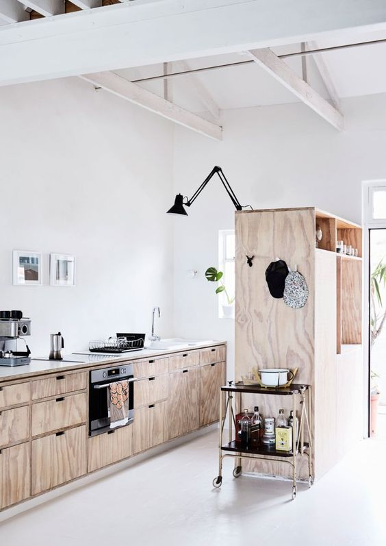 plywood cabinets make the kitchen look rustic yet modern and fresh