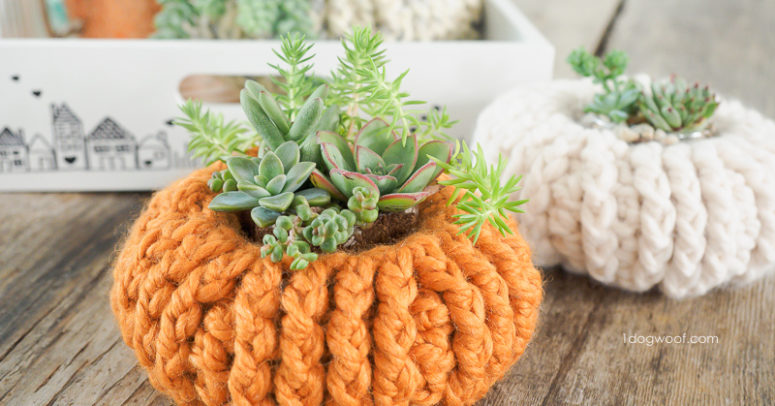 DIY crochet pumpkin succulent planter covers (via www.1dogwoof.com)