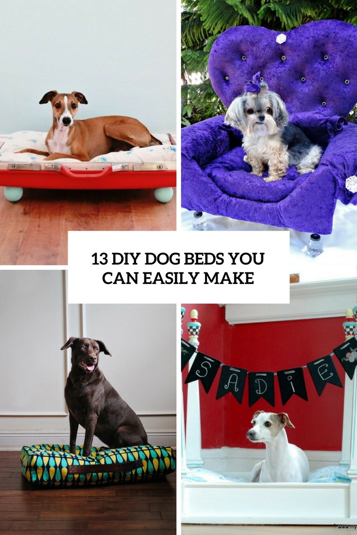 diy dog beds you can easily make cover