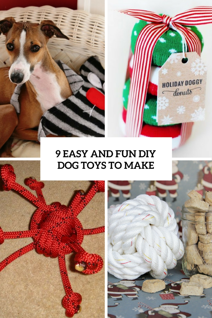 9 easy and fun diy dog toys to make cover