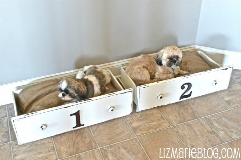 DIY drawer dog beds (via www.lizmarieblog.com)