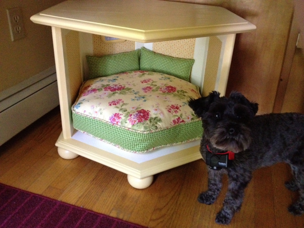 DIY old side table dog bed (via lauraerickson2001.wordpress.com)