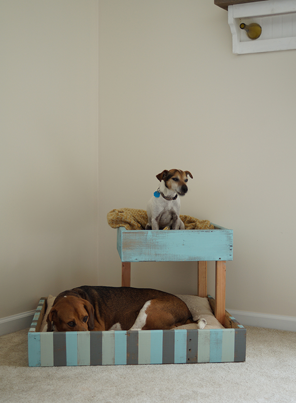 DIY shipping pallet double dog bed (via savedbylovecreations.com)
