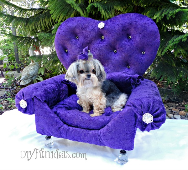 DIY glam armchair dog bed (via diyfunideas.com)