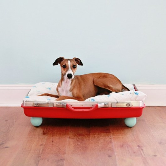 DIY vintage suitcase dog bed (via www.mysocalledcraftylife.com)