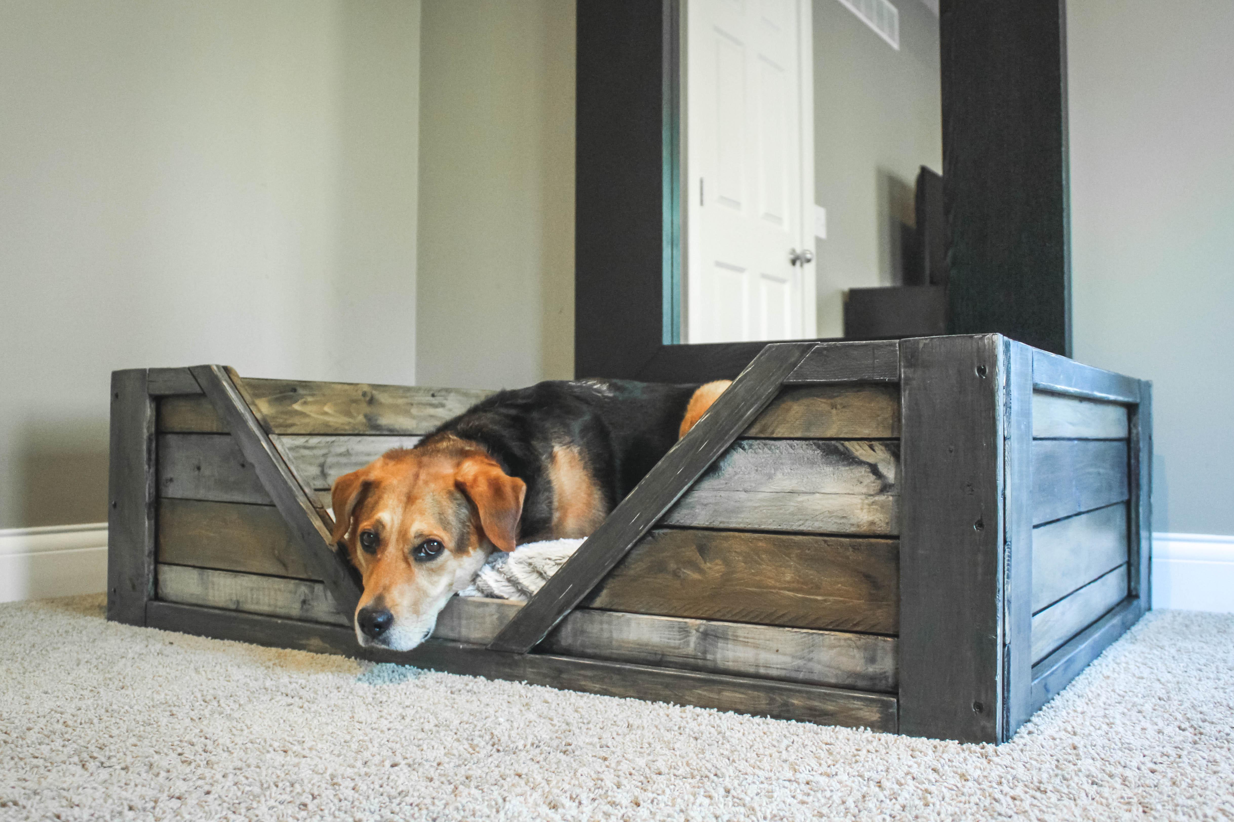 DIY industrial rustic dog bed