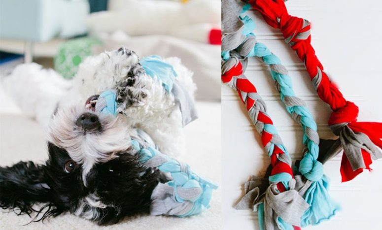 DIY dog toy braid of old shirts (via www.rover.com)