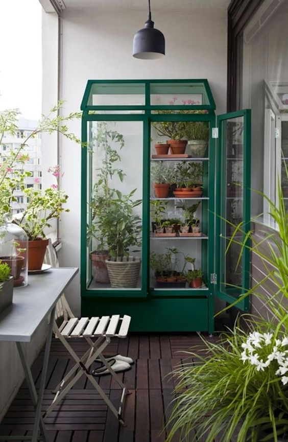 if there's enough space, you can make a bold greenhouse with planters and hold them there