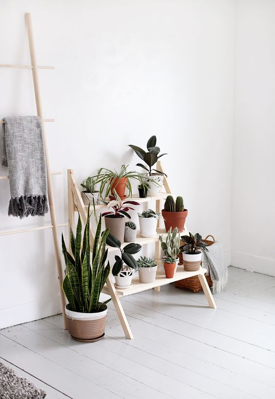 a modern and comfy ladder plant stand for a modern and fresh serene space