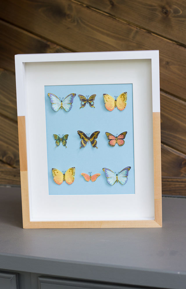 DIY butterfly specimen wall art (via www.designimprovised.com)