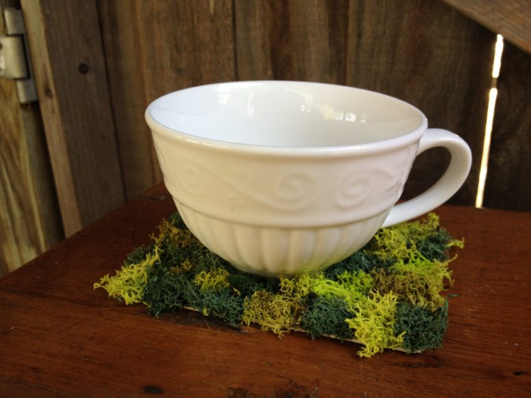 DIY reserved reindeer moss coasters (via zestitup.com)
