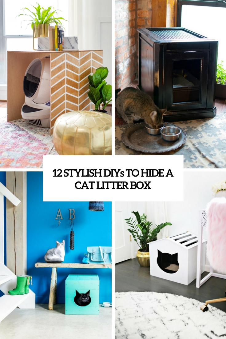 stylish diys to hide a cat litter box cover