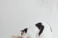 DIY minimalist sisal rope cat scratcher
