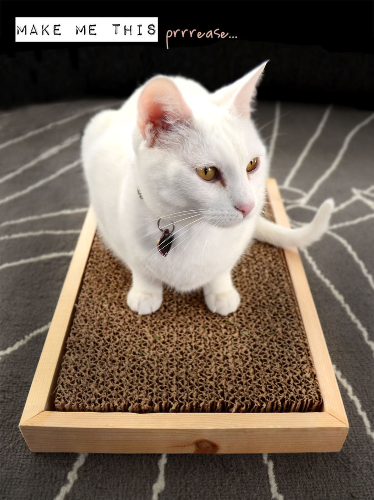DIY cardboard in a box cat scratcher (via www.apartmenttherapy.com)