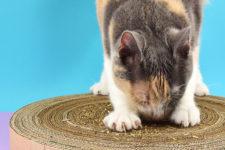 DIY round cardboard cat scratcher