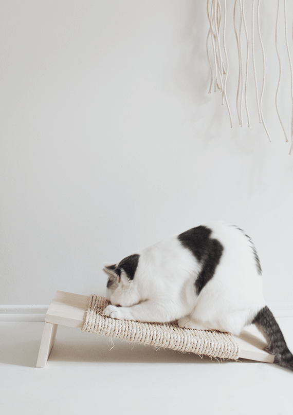 DIY minimalist sisal rope cat scratcher (via almostmakesperfect.com)