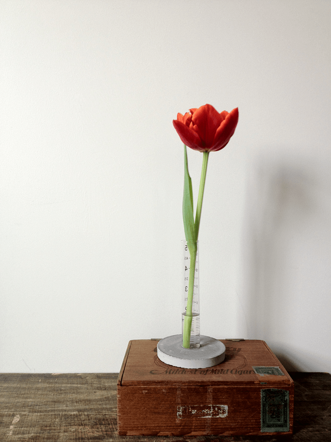 DIY cconcrete stand and glass cylinder vase (via www.adailysomething.com)