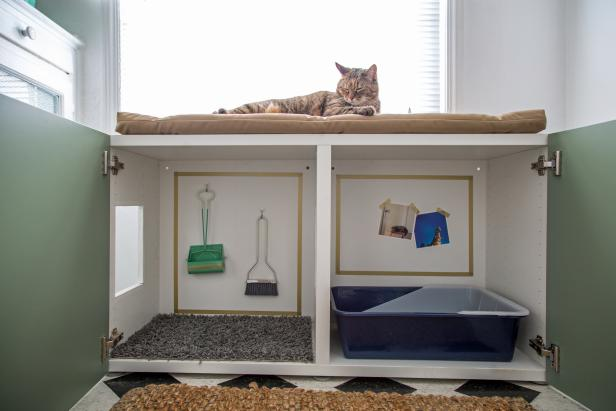 DIY cabinet with a cat litter box inside (via www.diynetwork.com)