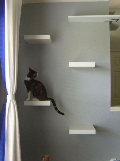 IKEA Lack shelves attached to the wall to make a kitty ladder